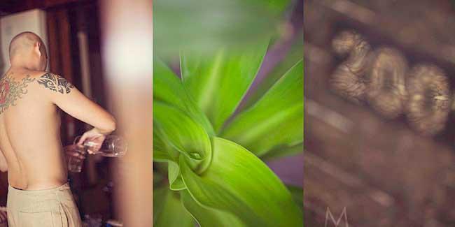 Flora_Raf_W011
